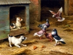 Puppies and Pigeons F