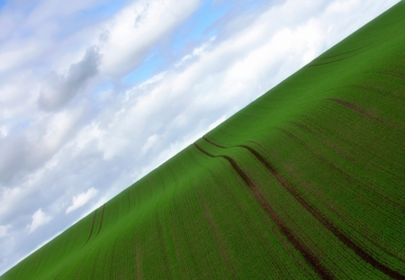 Green - texture, cloud, sky, blue, green, field, view from the top