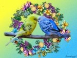 BUDGIES ON A BRANCH