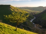 Dovedale in England