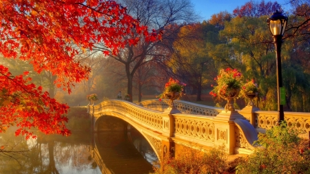 Passage to autumn - image, orange, yellow, nice, sky, trees, panorama, water, cool, awesome, landscape, red, autumn, 1920x1080, beautiful, seasons, trunks, picture, photography, green, bridge, river, beije, other, photo, amazing, view, passage, colors, leaf, plants, iew, nature, natural