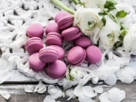 Macarons and flowers