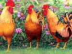 ✿⊱•╮Roosters in Place╭•⊰✿