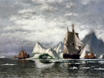 Arctic Whaler Among the Icebergs