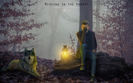 Missing in the Forest