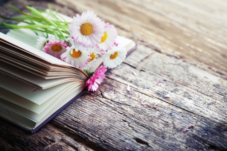 ♥ - book, flowers, soft, anstract