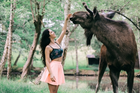 Petting a Friendly Moose - brunette, moose, model, outdoors