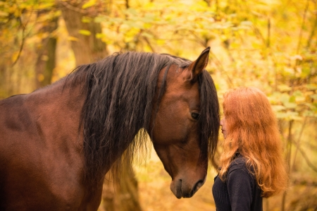 :-) - redhead, yellow, girl, animal, cowgirl, horse, cal, autumn