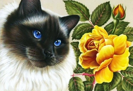 Kitty and Rose - blossom, cat, flower, artwork, painting