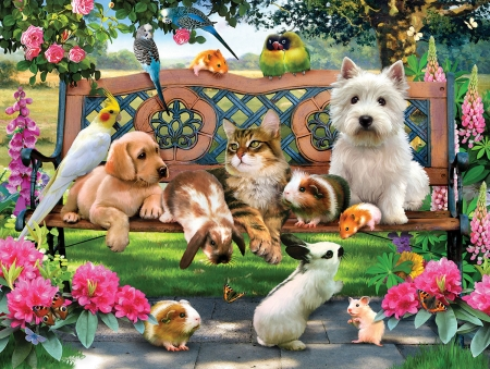 Pets - garden, pink, dog, bird, mouse, flower, caine, pet, pisica, green, luminos, cat, bunny, summer
