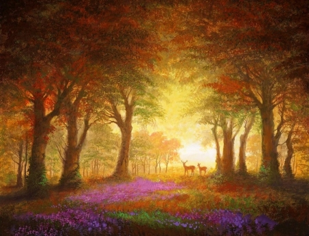 Woodland Sunrise - woods, love four seasons, attractions in dreams, trees, deer, paintings, paradise, summer, flowers, nature, sunrise, forests