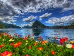 Scenery of Switzerland nature