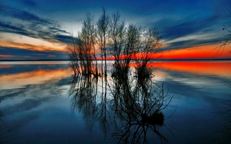 Beautiful sunrise on the lake - red, image, orange, renderized, beautiful, sunset, clouds, picture, nice, shadows, sun rays, sunrise, mirror, sunbeam, blue, amazing, reflex, horizon, view, colors, silhouettes, black, sky, trees, water, cool, surface, plants, awesome, sunshine, reflections, landscape