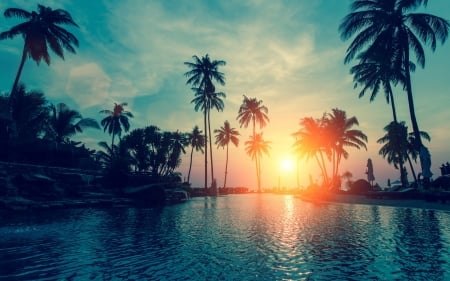 Tropical Sunset - sun, water, river, reflection, sky, palms