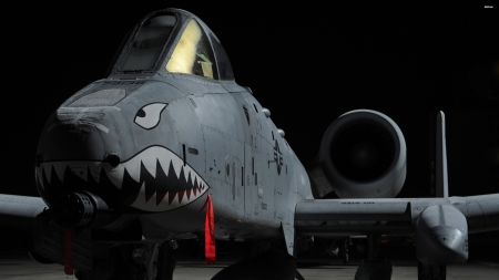 fairchild republic a10 thunderbolt ii - fairchild, thunderbolt, jet, republic