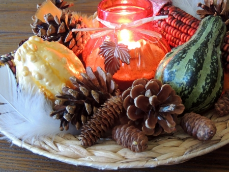 Thanksgiving Centre Piece - Pine Cones, Thanksgiving, Abstract, Photography, Candle