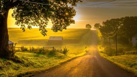 Sunlit Country Road - Sky & Nature