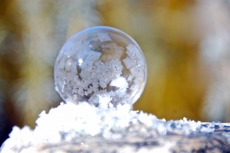 Frozen Ball - Winter, Nature, Ball, Frozen, White