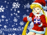 Sailor Moon Chrismas