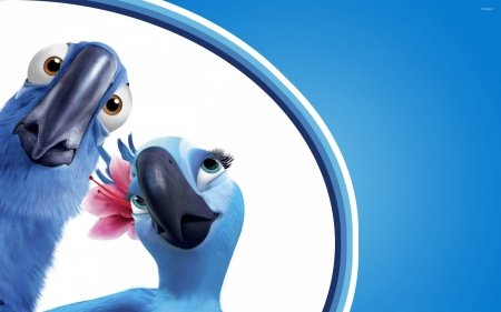 Rio (2011) - poster, movie, pasare, parrot, macaw, bird, white, couple, blue, rio