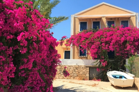 House in Greece - House, in, flower, Greece