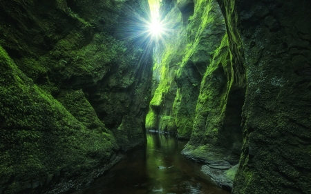 Green canyon - sun, black, gorge, canyon, water, green, dark, plants, moss, nature, river