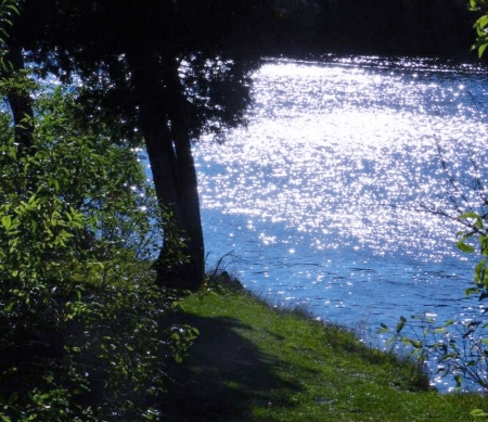 River Of Glitter - Summer, Trees, Nature, Glitter, Photography, River