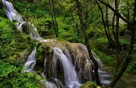Forest cascades - forest, cascades, greenery, waterfall, beautiful, trees