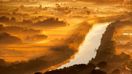 Golden dawn - aerial view, image, foggy, yellow, fog, gold, splendor, scenario, morning, rivers, sunbeam, dawn, golden, silhouette, trees, panorama, hotography, water, sunshine, landscape, field, scenic, brown, icture, silver, picture, photography, sun rays, smoke, scenery, beije, photo, view, shadow, spring, maroon, riverscape, plants, nature, natural, scene