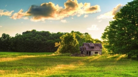 Hut on Grassy Field - grass, house, forest, clouds, field, trees, hut, nature