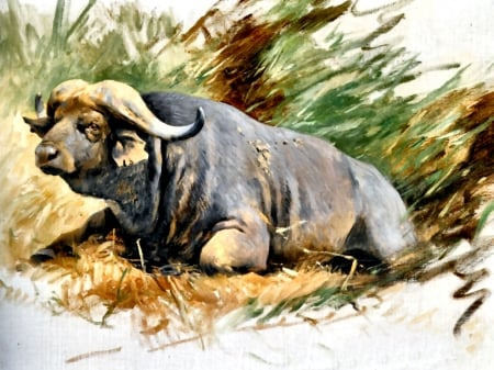 Kafferbuffels - art, buffalo, beautiful, illustration, artwork, animal, cape, painting, wide screen, wildlife, nature