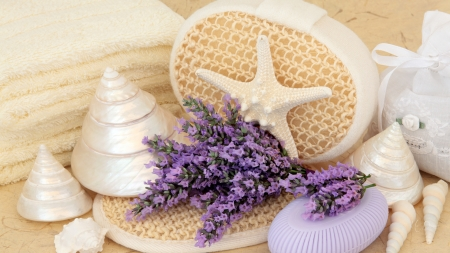 Lavender Star Fish - sea shells, fragrant, lavender, flowers, loofah, sponge, star fish, Firefox Persona theme, soap, spa, bath