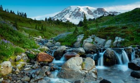 Gorgeous Rocky Mountain Stream - Mountains & Nature Background Wallpapers  on Desktop Nexus (Image 2291025)