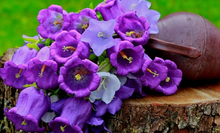 Still life - lovely, flowers, purple, pretty, still life, bluw, beautiful, bells, summer, pot