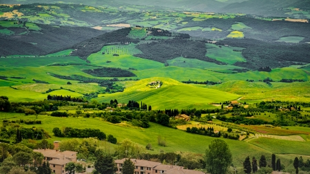 Italian rural scene - Trees, Rural, Fields, Italy, Forests