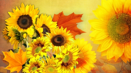 Sunny Autumn Flowers - leaves, Firefox Persona theme, flowers, sunflowers, gold, summer, autumn