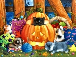Halloween Surprise - Cats F