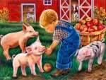 Little Farm Boy F