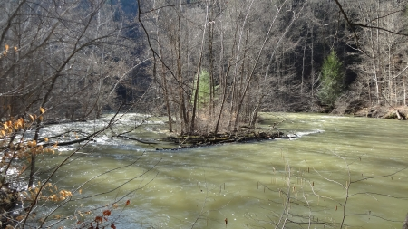 Swollen Mohican River in Spring - Forest, Spring, Nature, River