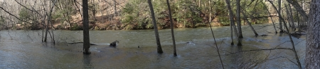Flooded Mohican River Panorama - Spring, Forest, River, Nature