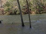 Flooded Mohican River Panorama