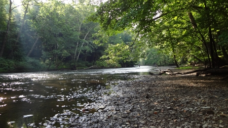 Mohican River in Summer - Summer, Forest, River, Nature