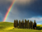 Rainbow above Tuscany Field,Italy