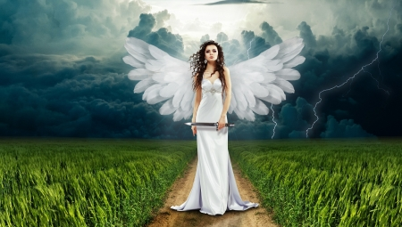 Angel With Knife - fantasy, wings, grass, clouds, woman, knife