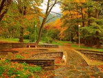 Benches in Park of Fall Foliage