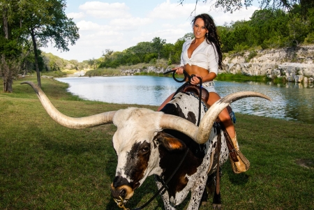 Beauty On A Longhorn . . - bulls, cowgirl, boots, outdoors, women, brunettes, longhorn, river, girls, Texas, female, models, ranch, fun, fashion, western, style