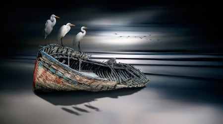 White Cranes on a Boat - Sea, Beaches, Artistic, Boats, Paintings, Nature, Birds