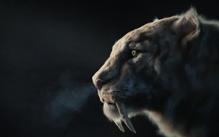 Sabertooth Fantasy Abstract Background Wallpapers On Desktop