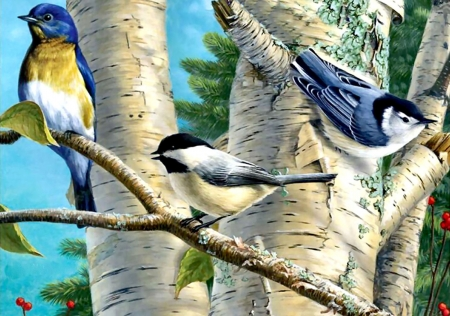 Songbird Favorites FCmp - art, songbirds, beautiful, illustration, artwork, bluebird, animal, nuthatch, bird, chickadee, avian, painting, wide screen, wildlife, nature