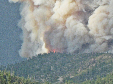 wildfire on the mountain - fire, mountains, forests, trees, smoke